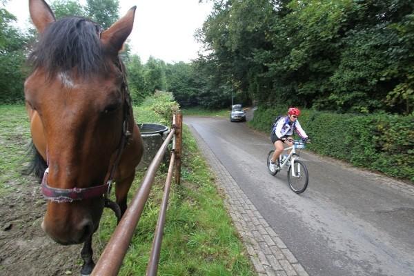 Belgische zege in Ronde van Limburg
